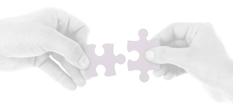 Flexible Engagement Model